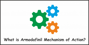 Armodafinil Mechanism of Action